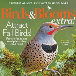 Birds And Blooms Extra...