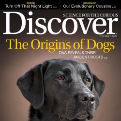 Discover Magazine Yearly...