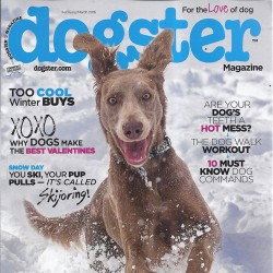 Dogster Magazine Yearly...